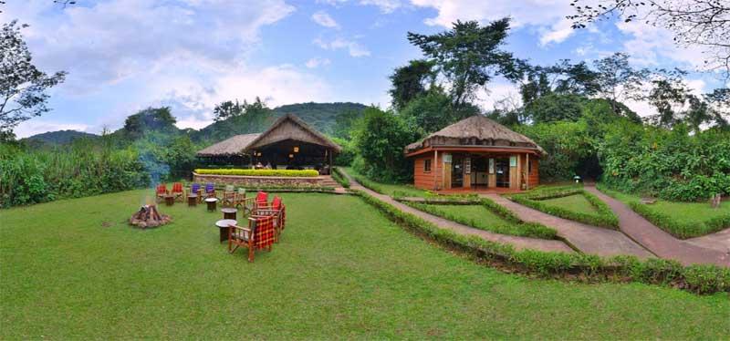 Sanctuary Forest Camps