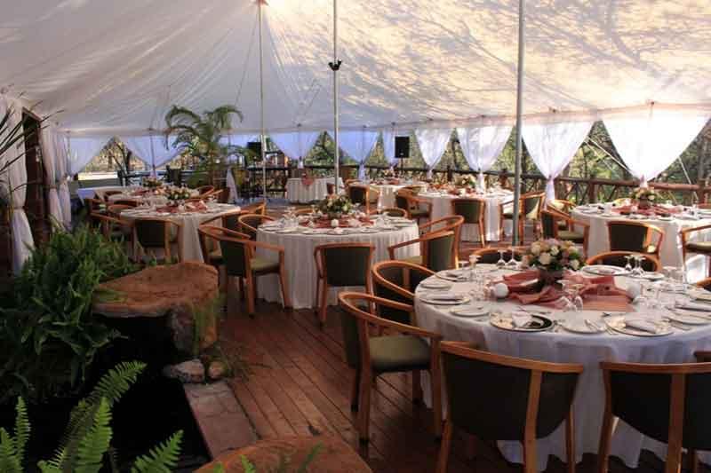 Marloth Park Wedding Reception