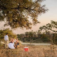 3 Epic Safari Wedding Venues in Kruger