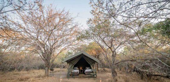 3 Sun Destinations Properties Offering a Conscious Safari Experience