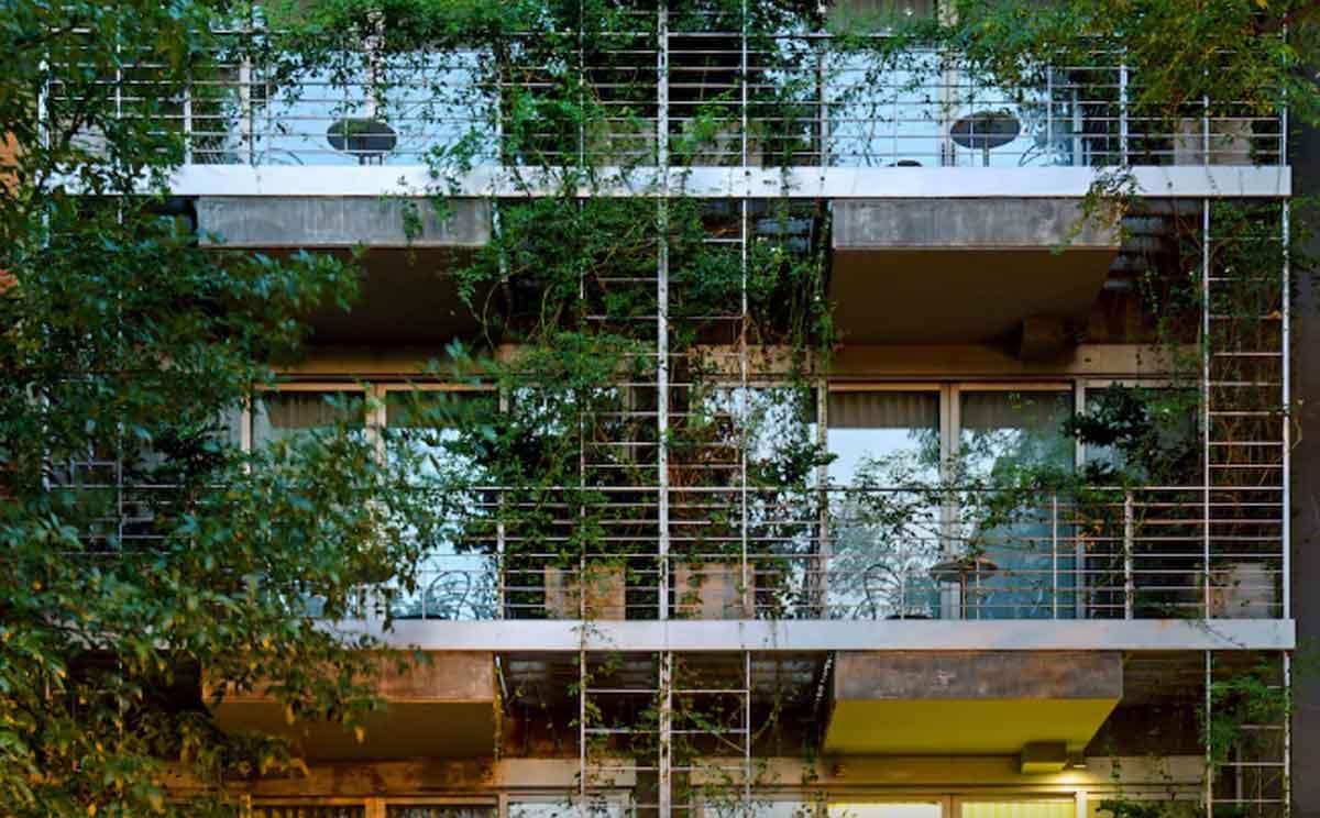 Palo Santa Balcony Green