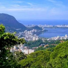 Rio's Tijuca National Park: Explore the World's Largest Urban Forest