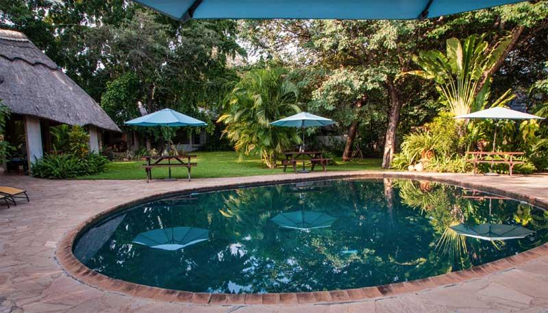 Bayete Vic Falls Pool