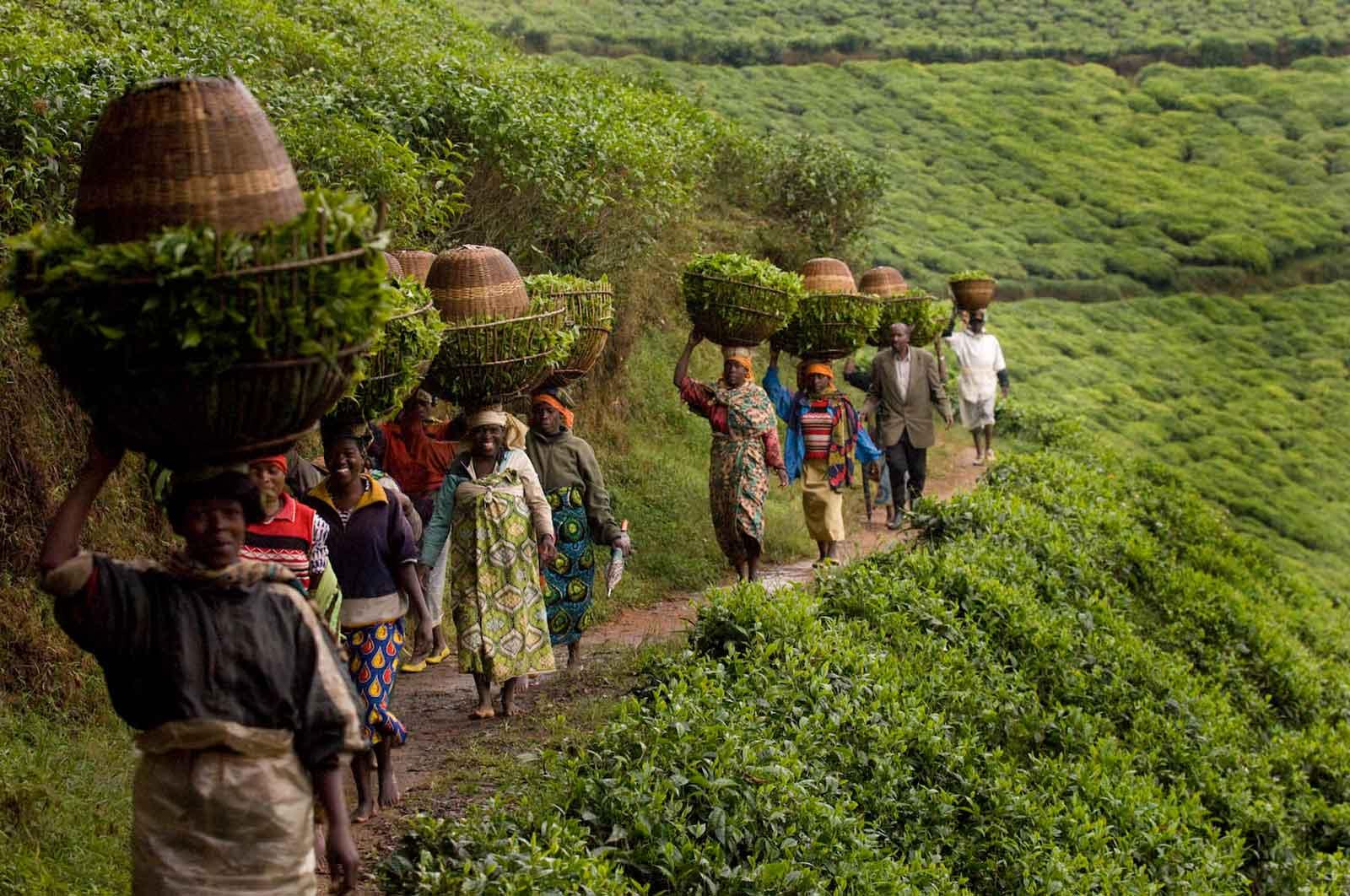 Rwanda Community