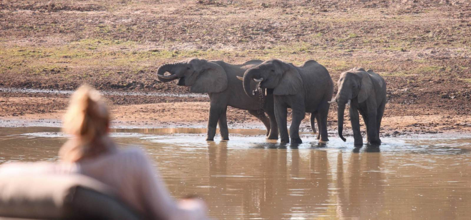 Watching elephants from the lodge at Chinzombo