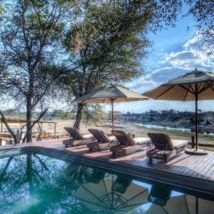 Client Feedback : A Journey to Cape Town – Kruger – Vic Falls – Botswana