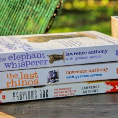 8 Safari Themed Books to Read Before Going to Africa
