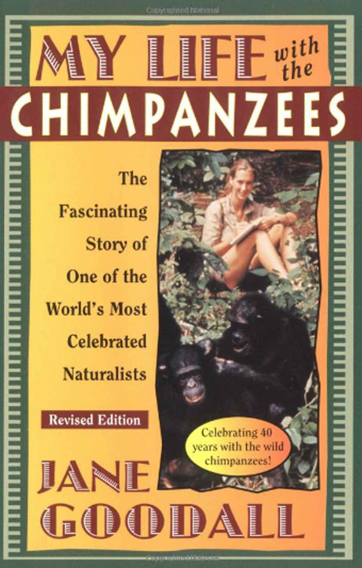 Jane Goodall Chimps