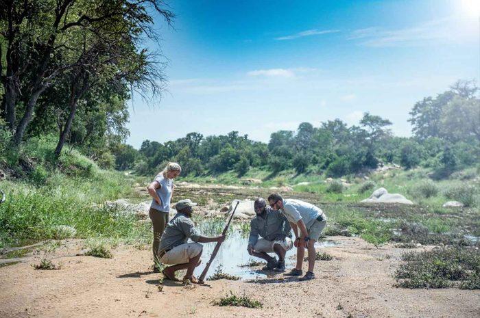 New Kruger Walking Trails Camp for Simbavati