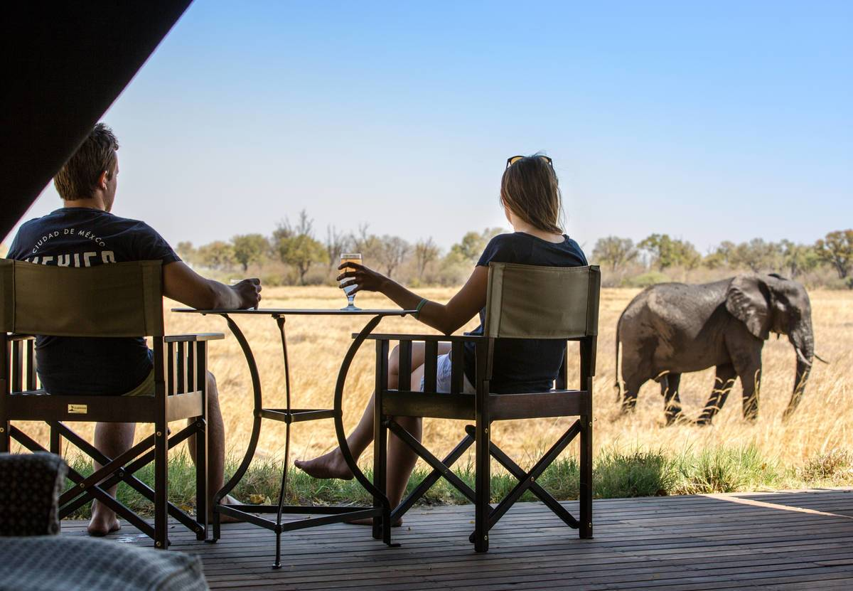 Machaba Camp Elephants