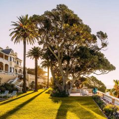 Kruger to Cape Town : Bush and Beach Pairings