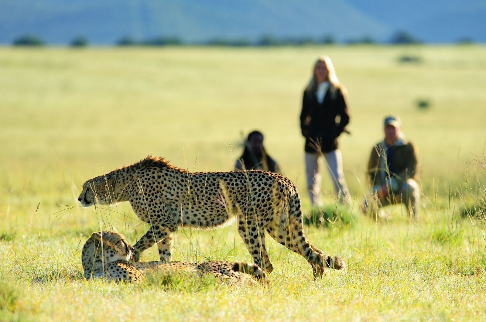 Walking Safaris in Africa, Walking Safaris in Africa
