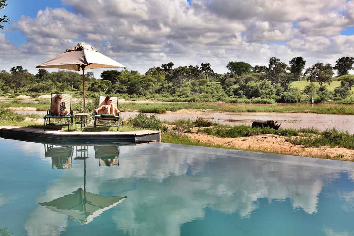 South Africa Safari in 2021
