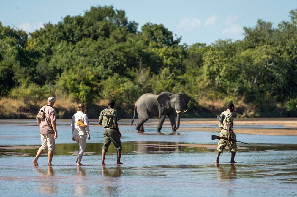 Walking Safaris in Africa, Walking Safaris in Africa