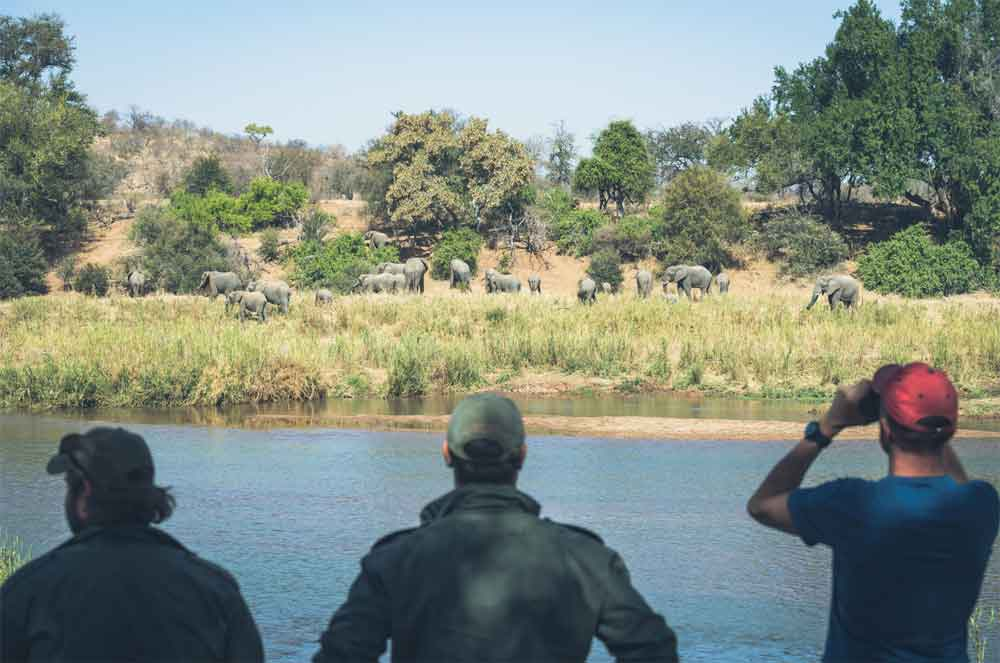Sun Safaris-Walking Safaris in the Kruger National Park