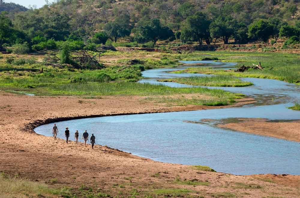 Walking Safaris in the Kruger National Park, Top 5 Walking Safaris in the Kruger National Park
