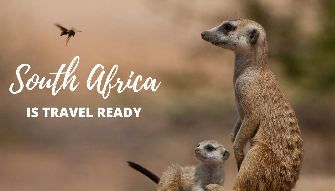 South Africa is travel ready-Sun Safaris