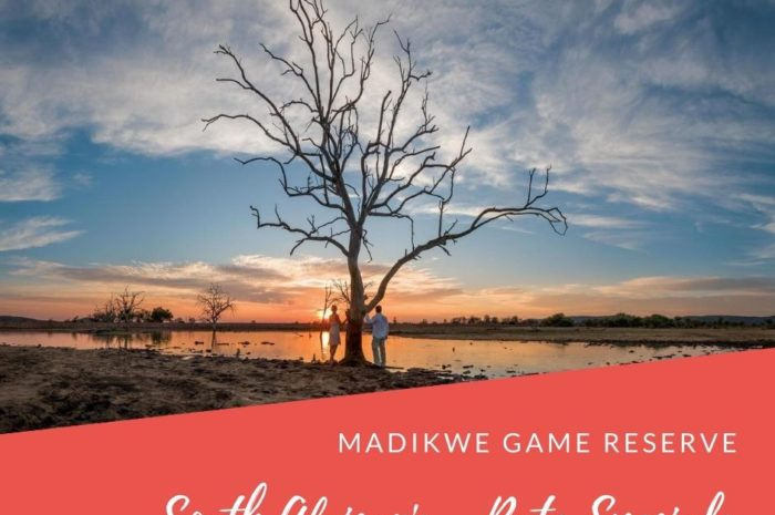 Madikwe SA Residents Travel Deals 2020