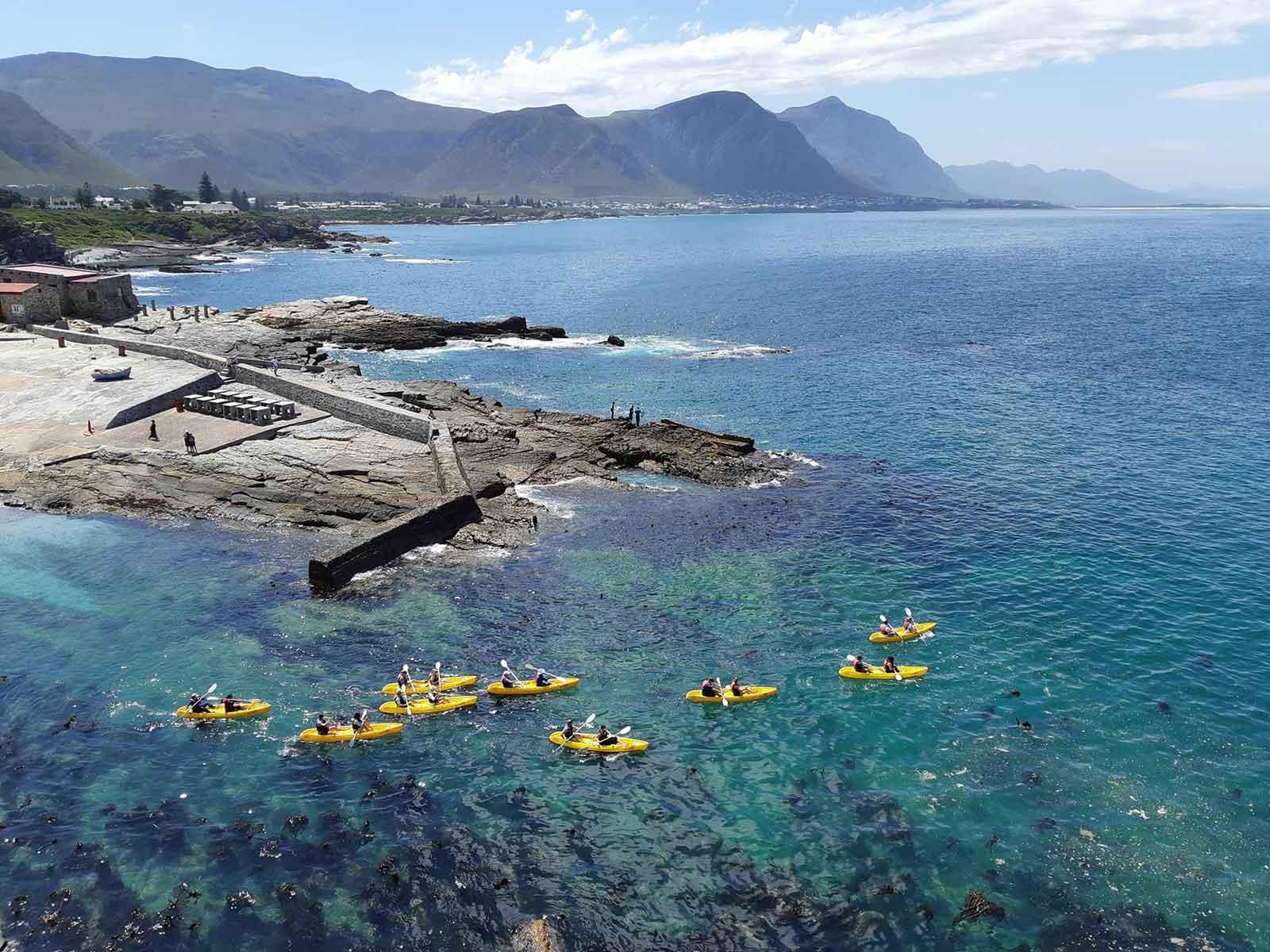 Hermanus Sea Kayak